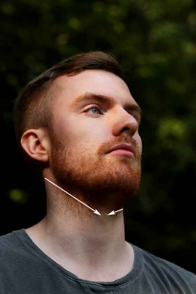 how to line up your neck beard